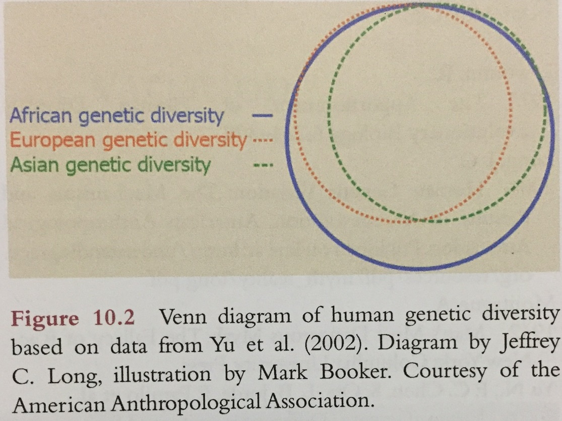 Evolution of variation mggoss lewontins diagram on human genetic variation was updated in 2002 based on the data collected by yu et al and is represented in figure 102 this venn ccuart Gallery